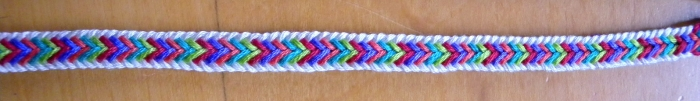 photo of a 10-loop double braid, multicolor Edge pattern